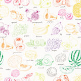 Seamless pattern with fruit on a white background. Vector illustration for your design Stock Images
