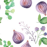 Seamless pattern with fruits and leaves. Seamless pattern with hand painted watercolor fruits and leaves in pastel colors inspired by garden plants. Romantic Royalty Free Stock Image