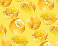 Seamless Pattern with fruits of orange tree in different shapes royalty free illustration