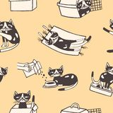 Seamless pattern with funny cat washing itself, eating, sleeping, sitting inside carton box and carrier. Cute cartoon. Pet animal in various poses hand drawn on royalty free illustration