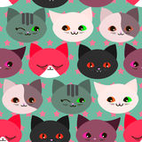 Seamless pattern with funny cats Stock Images