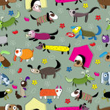 Seamless pattern with funny dogs. Stock Photos
