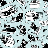 Seamless pattern with funny doodle cat in different postures against light blue background. Cute cartoon character hand Royalty Free Stock Photos