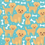 Seamless pattern funny golden beige dog and white bones, Kawaii face with large eyes and pink cheeks, boy and girl on blue backgro Royalty Free Stock Photo