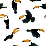 Seamless Pattern With Funny Toucan Birds stock image