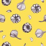 Seamless pattern with garlic on ocher, yelow background Stock Images