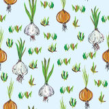 Seamless pattern with garlic and onion Stock Images