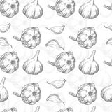 Seamless pattern with garlic Stock Image
