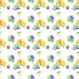 Seamless pattern with Gerber and Hydrangea flowers. Watercolor illustration Stock Photography