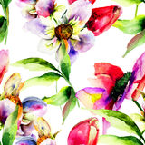 Seamless pattern with Gerber and Tulips flowers. Watercolor painting Royalty Free Stock Photography