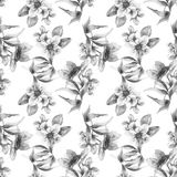 Seamless pattern with Gerber and Tulips flowers Royalty Free Stock Photography