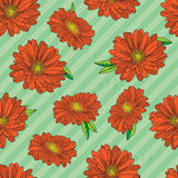Seamless pattern with gerberas Stock Images
