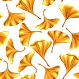 Seamless pattern with ginkgo biloba leaves. Royalty Free Stock Photography