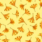 Seamless pattern with ginkgo biloba leaves. Stock Photos