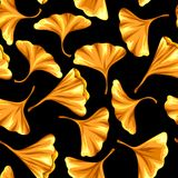 Seamless pattern with ginkgo biloba leaves. Stock Image