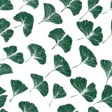 Seamless pattern with ginkgo biloba leaves. Leaf silhouette in the white background, vector royalty free illustration