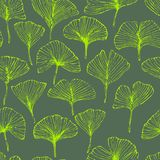 Seamless pattern with ginkgo biloba leaves, textured hand drawn outline leaf veins. Vector stock illustration