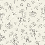 Seamless pattern with ginkgo biloba. medical, botanical plant background. Vector sketch hand drawn texture. Royalty Free Stock Photo