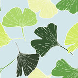 Print ginkgo Royalty Free Stock Images