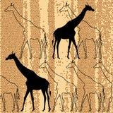 Seamless pattern  with giraffes Stock Photo