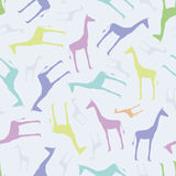 Seamless pattern with giraffes Stock Image