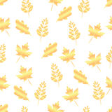 Seamless pattern of gold leaf maple, oak, rowan Royalty Free Stock Photo