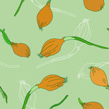 Seamless pattern with golden onion sprouting on a white background. Royalty Free Stock Image
