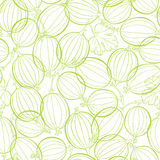 Seamless pattern with gooseberry. Stock Photography
