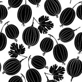 Seamless pattern with gooseberry. Black and white  backgro Royalty Free Stock Images