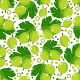 Seamless pattern with gooseberry. Stock Photo