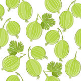 Seamless pattern with gooseberry. Royalty Free Stock Photo