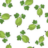 Seamless Pattern of Gooseberry Royalty Free Stock Photography