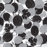 Seamless pattern with gooseberry. Monochrome  background. Stock Image