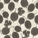 Seamless pattern with gooseberry. Monochrome  background. Royalty Free Stock Image