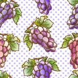 Seamless pattern with grape Royalty Free Stock Photos