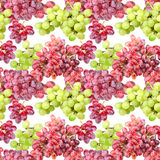 Seamless pattern of grape Royalty Free Stock Photo
