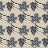 Seamless Pattern of Grape. In Blue. Vector illustration Stock Photos