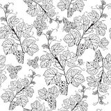 Seamless pattern with grape branches Royalty Free Stock Image