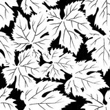 Seamless pattern with grape leafs Stock Photos