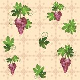 Seamless pattern with grape - vector Royalty Free Stock Photos