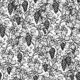 Seamless pattern with grape vine. Royalty Free Stock Images