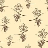 Seamless Pattern of Grape.Vintage Vector. Seamless Pattern of Grape. Vintage Vector illustration Royalty Free Stock Images