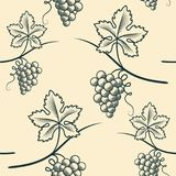 Seamless Pattern of Grape.Vintage Vector. Seamless Pattern of Grape. Vintage Vector illustration Stock Images