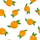 Seamless Pattern of  Grapefruit Stock Images