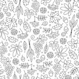 Seamless pattern with grapes, acorns, leaves Stock Image