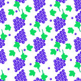 Seamless Pattern with Grapes Bundles and Leaves. Seamless pattern with blue grapes bundles and green leaves.Tasty juicy grape bunches endless texture with fruits Stock Photo