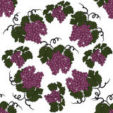 Seamless pattern with grapes. Stock Photography