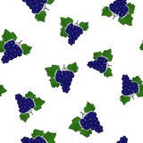 Seamless Pattern of Grapes Stock Images