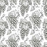 Seamless pattern with grapes. Hand drawn vector illustration Royalty Free Stock Images