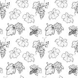 Seamless pattern of grapes and leafs Royalty Free Stock Image